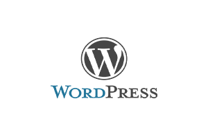 wordpress-300x195.png